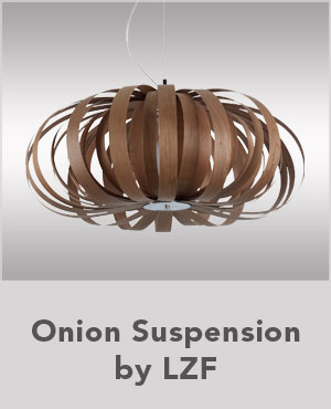 Onion Suspension