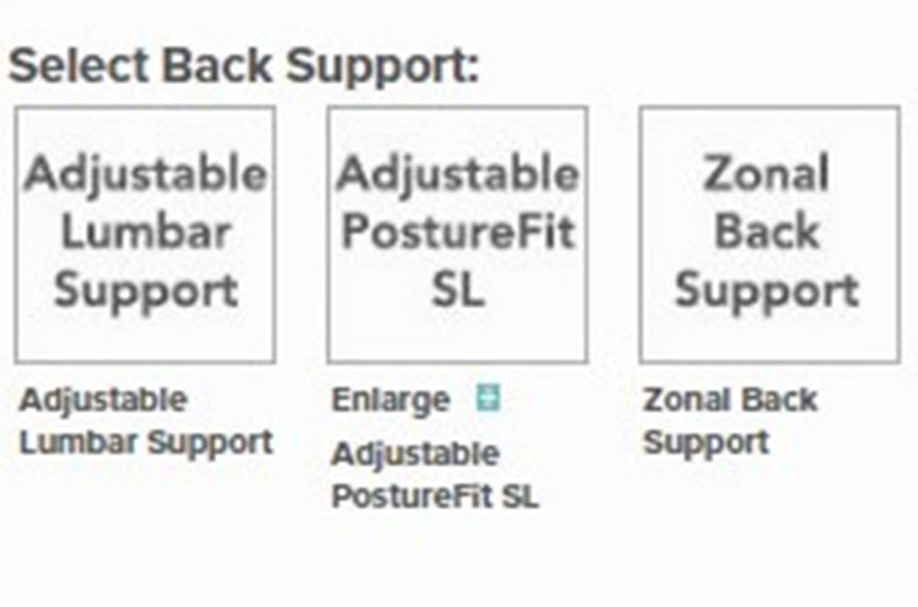 Aeron Collection Options - Back Support