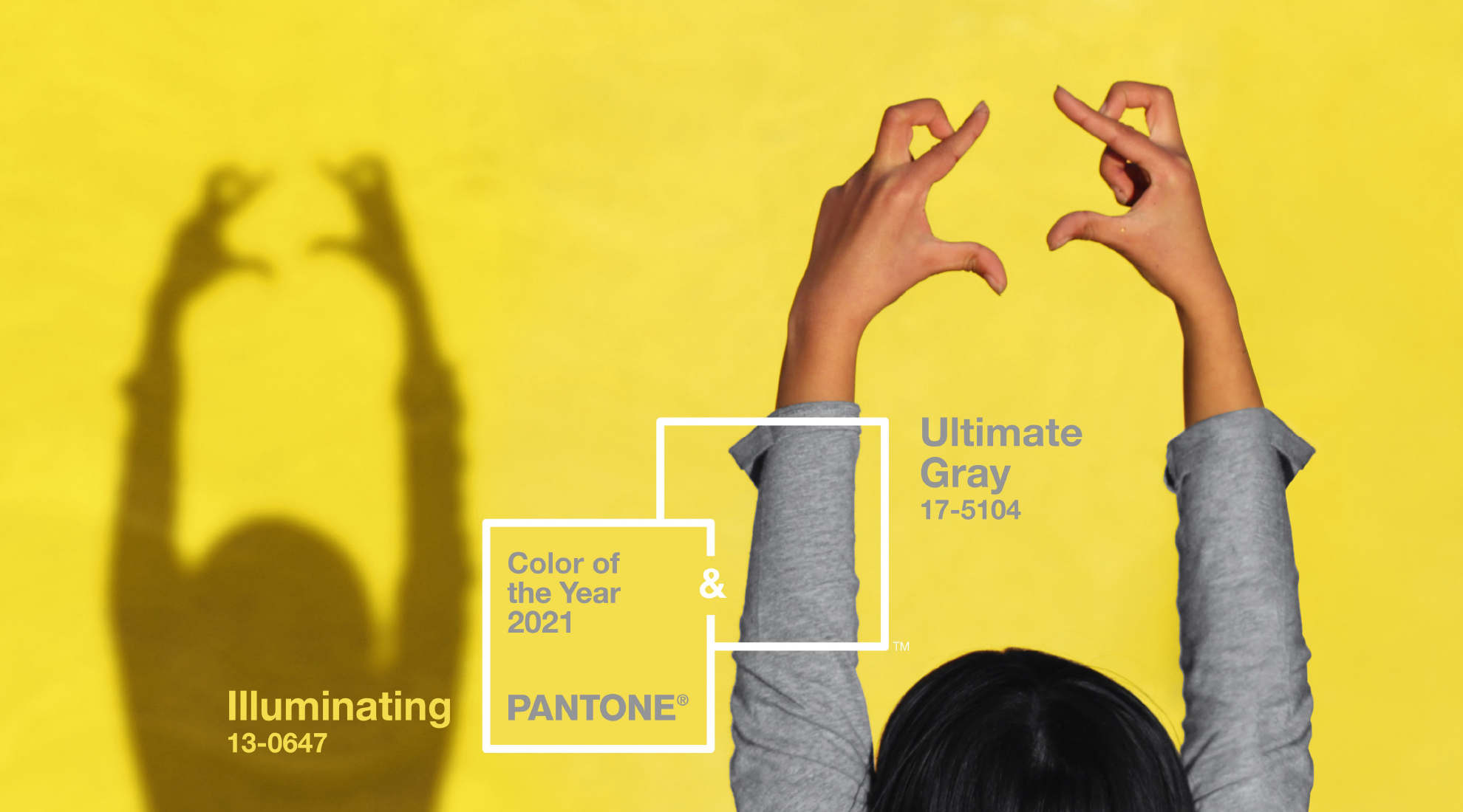 2021 Pantone Color of the Year: Ultimate Gray and Illuminating