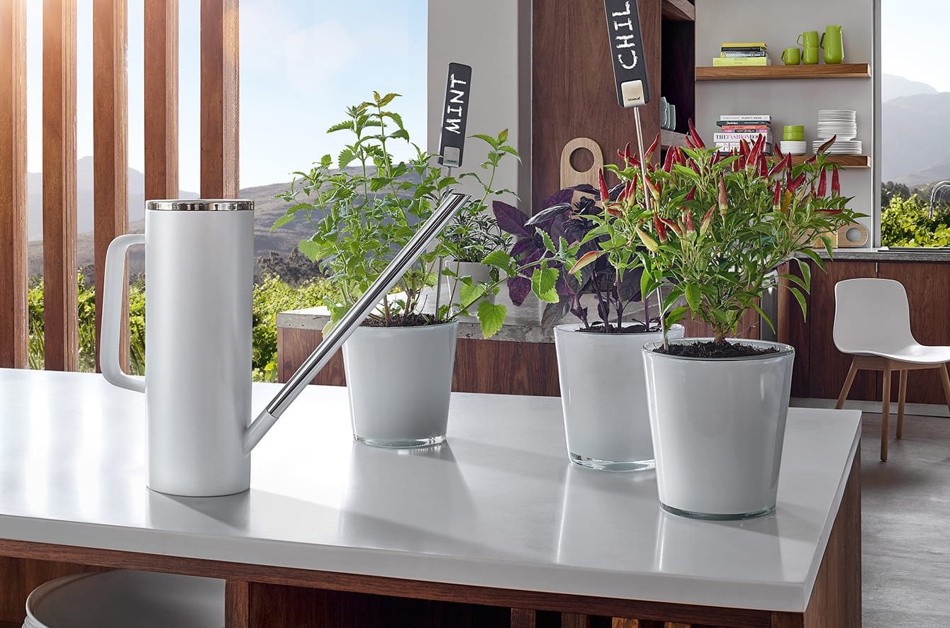 Limbo Watering Can by Blomus