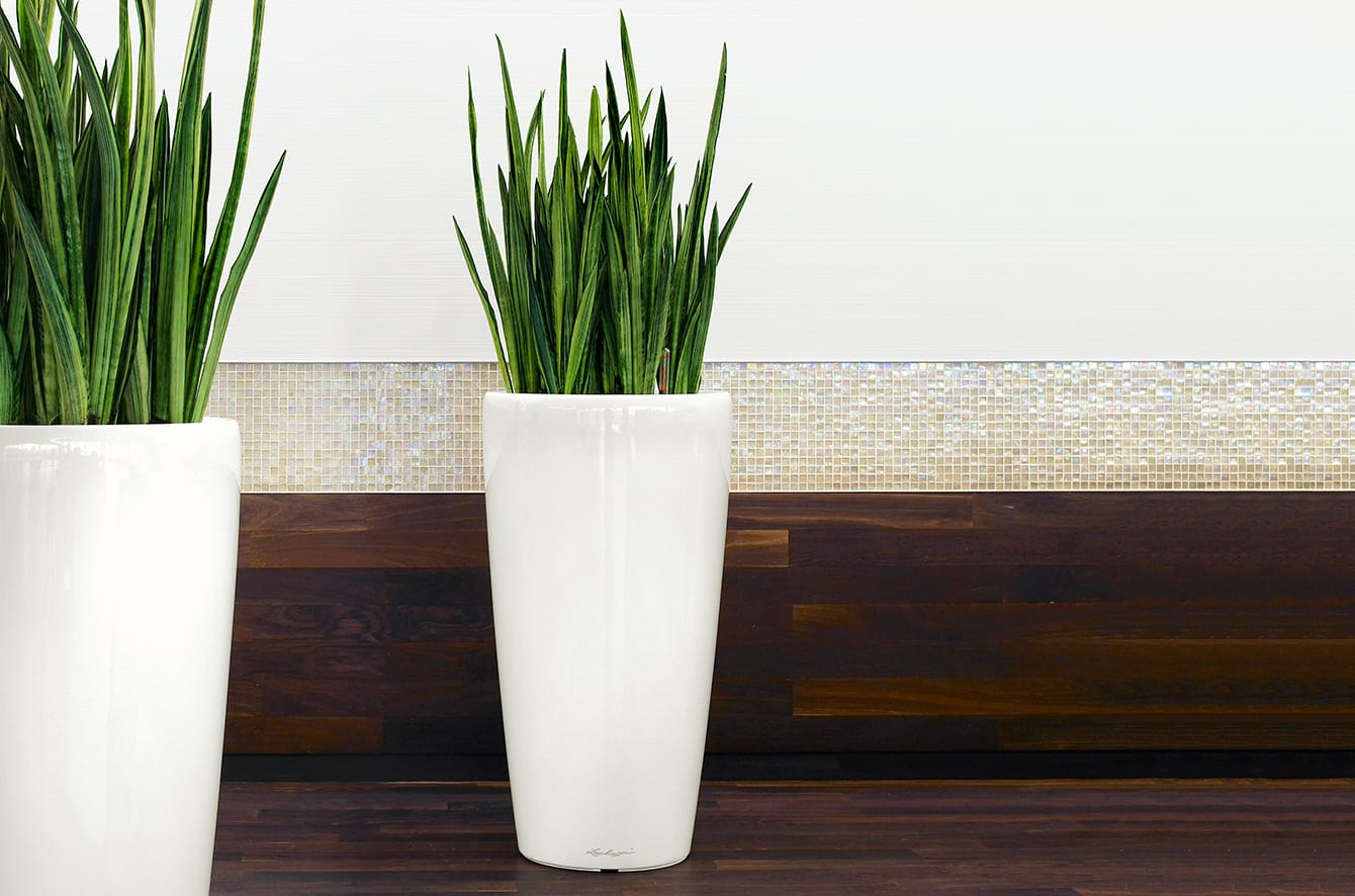 Rondo 32 Self Watering Planter by Lechuza