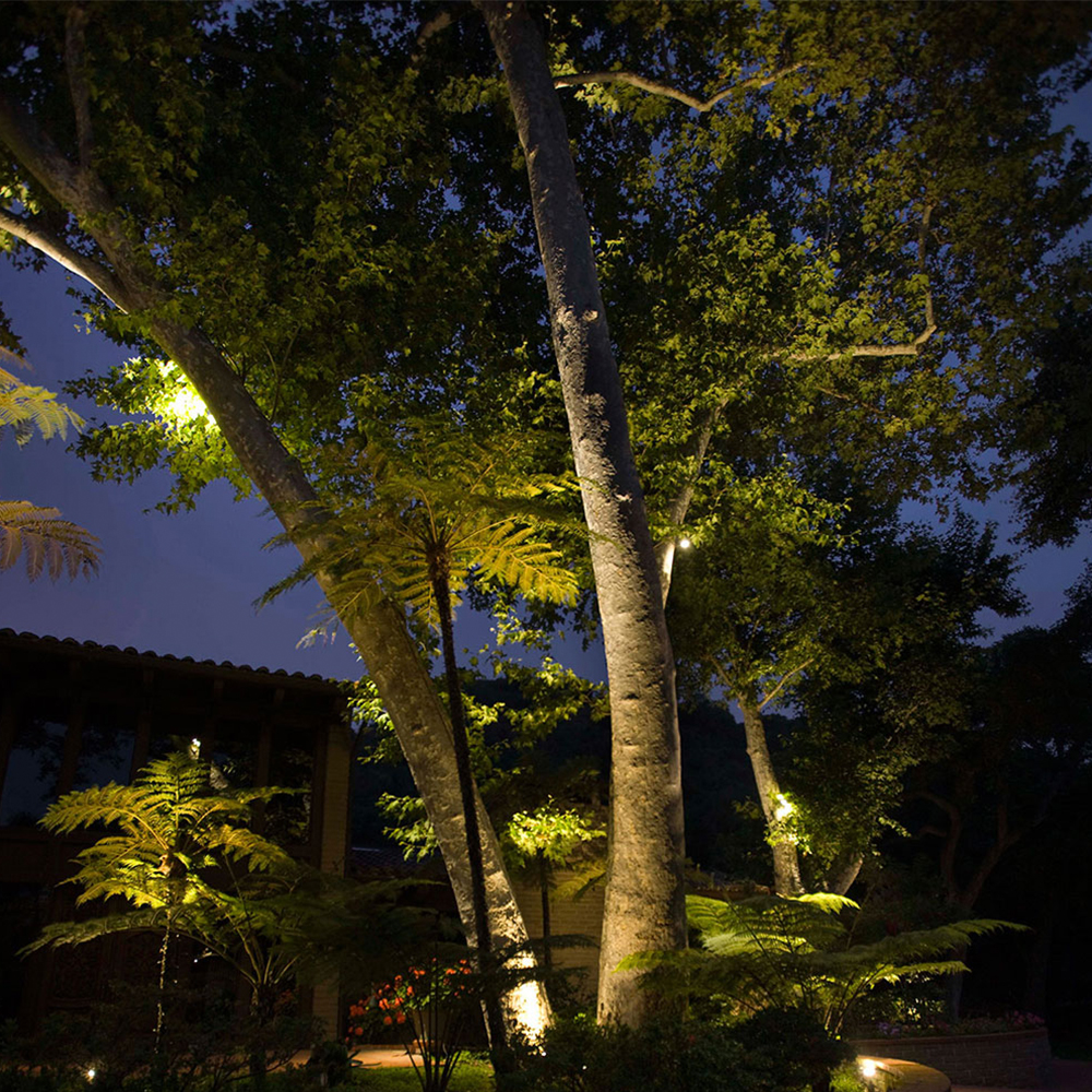 Landscape Lighting Ideas: Landscape Lighting Tips At
