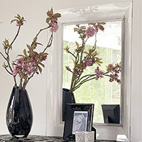 Entryway & Foyer Furnishings Mirrors