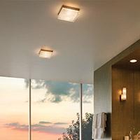 Ceiling Lights Flushmounts