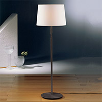 Classic & Traditional Floor Lamps